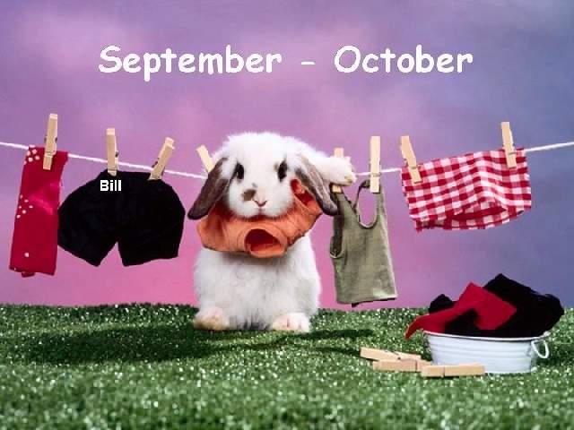 Shangrala's Real Playboy Bunny Calendar