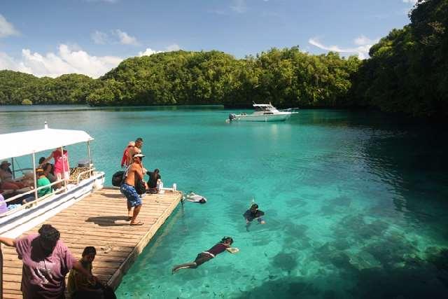 Shangrala's Deer Jellyfish Lake
