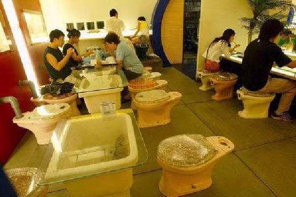 Shangrala's Modern Toilet