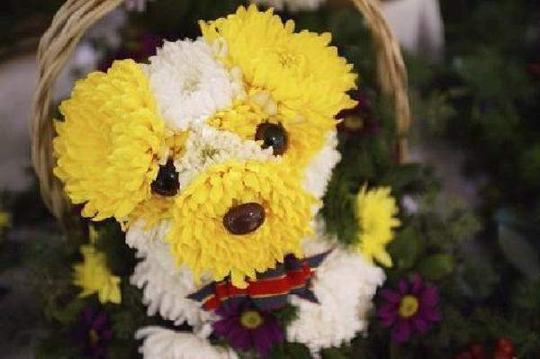 Shangrala's Flower Dog Art