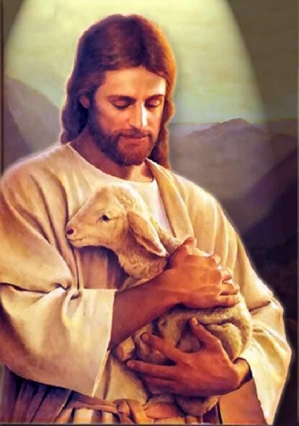 Shangrala's Christ's Life