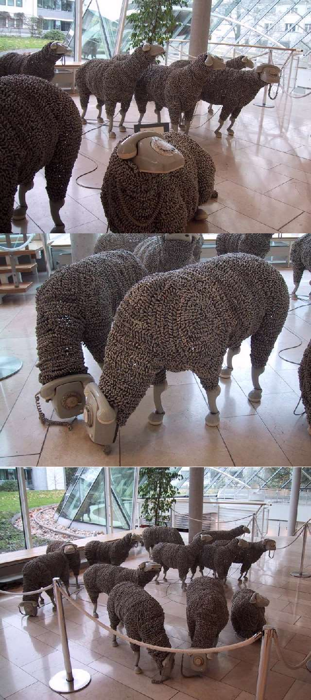 Shangrala's Phone Sheep Art