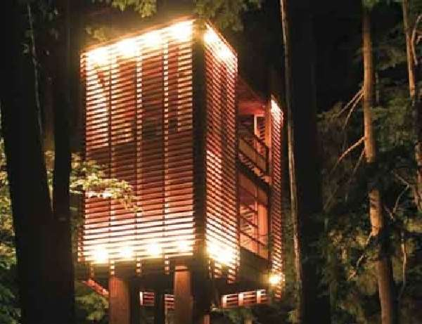 Shangrala's Awesome Tree Houses