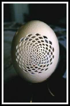 Shangrala's Watermelon And Egg Art