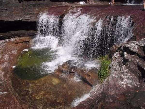 Shangrala's Cano Cristales River