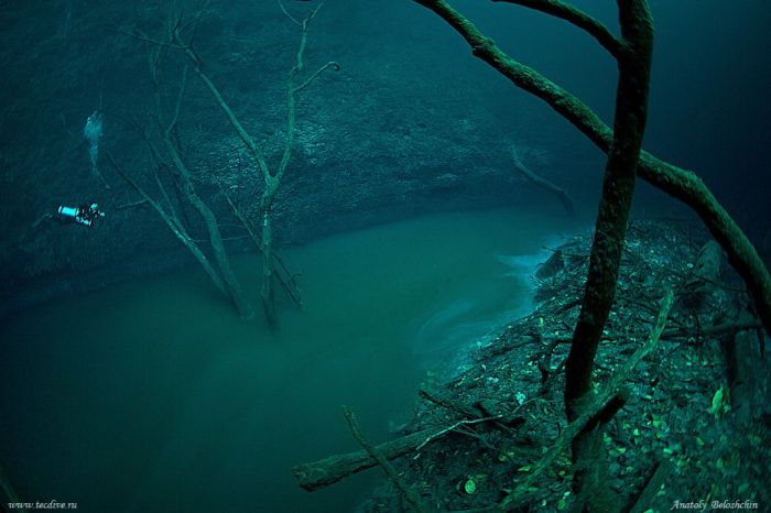 Shangrala's Underwater River