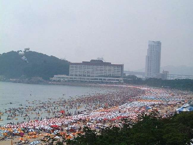 Shangrala's Beaches In South Korea