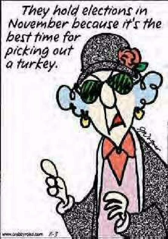 Shangrala's Maxine Humor