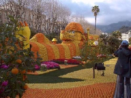Shangrala's Festival Of Citrus