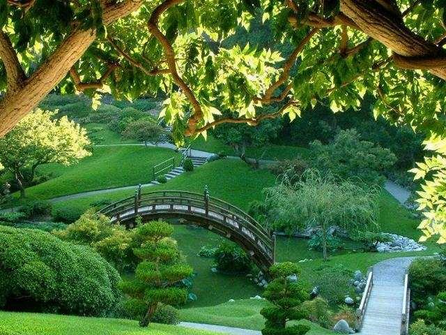 Shangrala's Corner Of Paradise