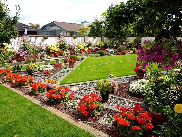 Shangrala's Amazing Home Garden