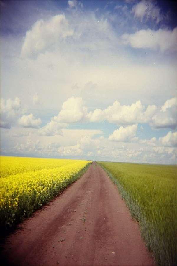 Journey Through Life