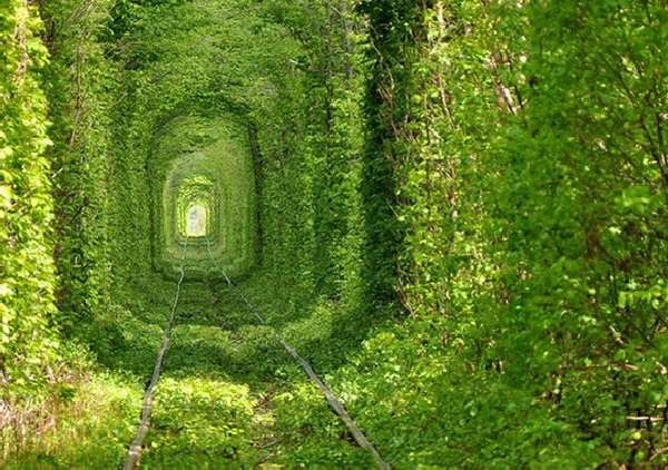 Shangrala's World's Unusual Tunnels