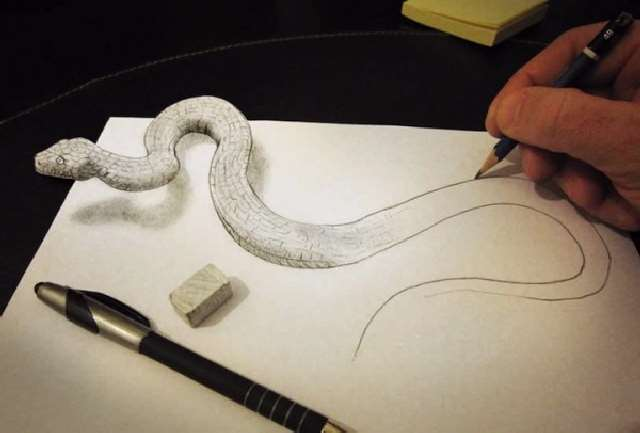 Shangrala's Diddi 3D Drawings