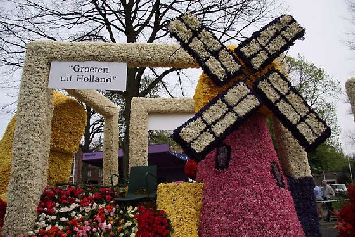 Shangrala's Holland Parade Of Flowers