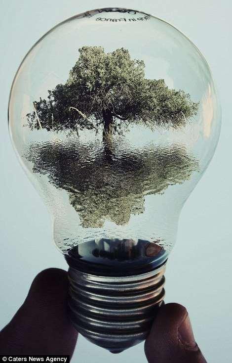 Shangrala's Light Bulb Illusion Art !