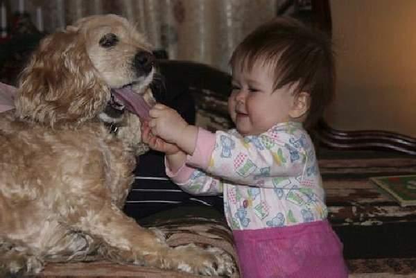 Shangrala's Nanny Animals 3