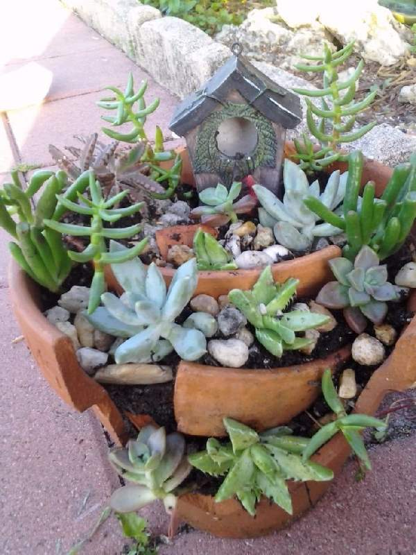 Shangrala's Fairy Garden Pot Art