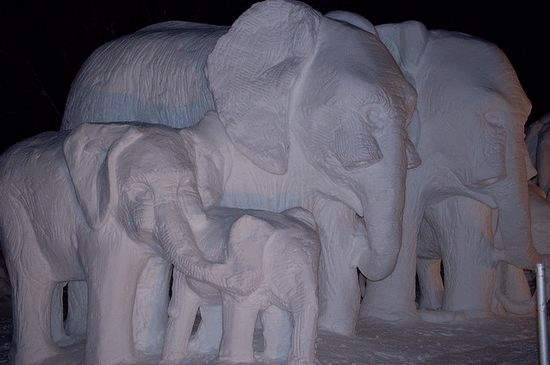 Shangrala's Snow Sculpture Art