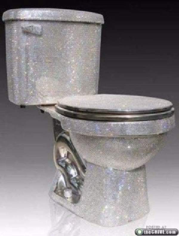 Shangrala's Designer Toilets