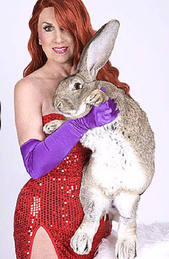 Shangrala's World's Largest Bunny