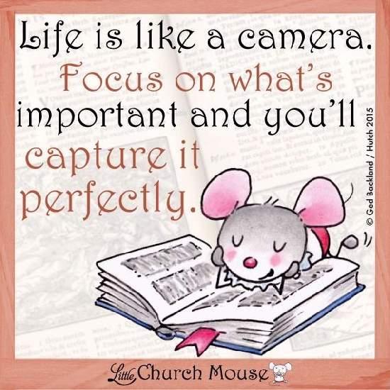 Shangrala's Church Mouse Wisdom