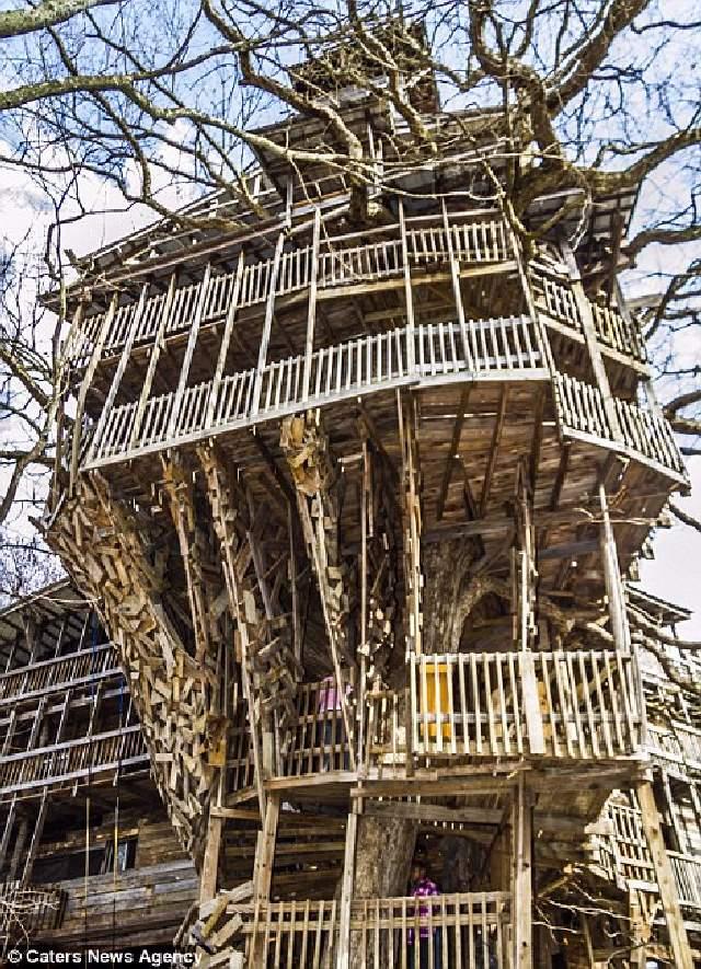 Shangrala's World's Tallest Treehouse