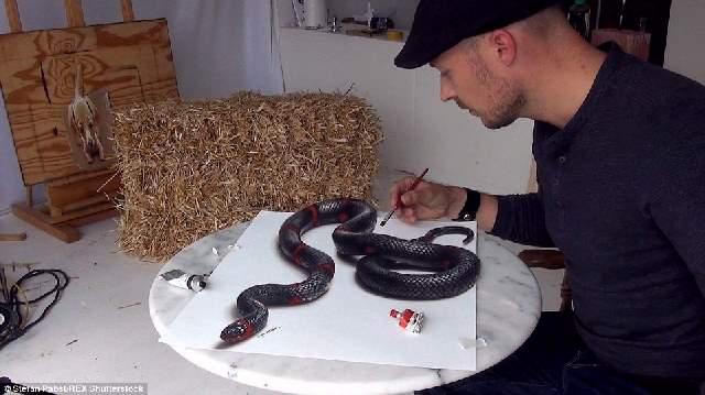 Shangrala's Stefan Pabst 3D Paintings