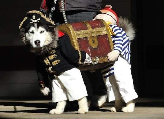Shangrala's Best Costumes
