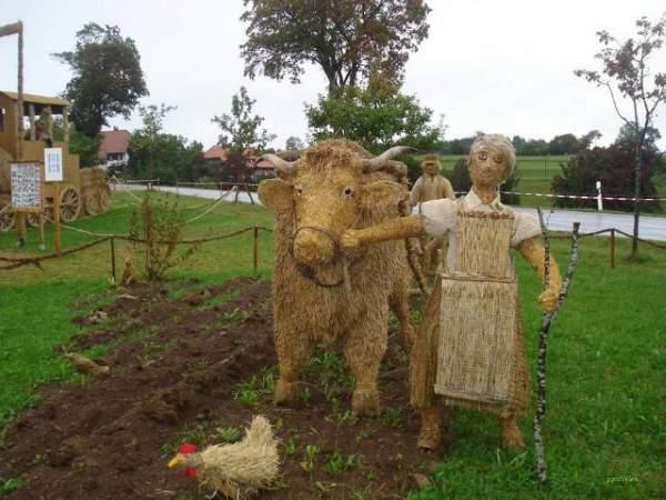 Shangrala's Farmers Gone Wild 3
