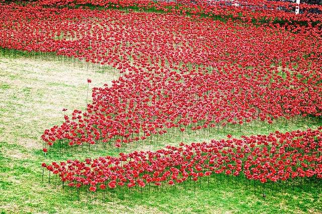 Shangrala's WWI River Of Blood Tribute