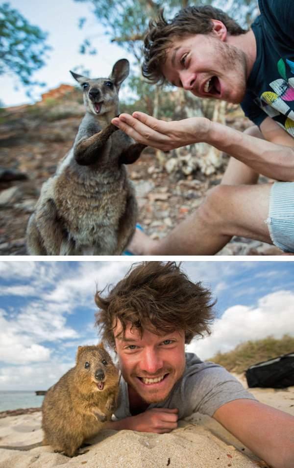 Shangrala's Animal Friends 3