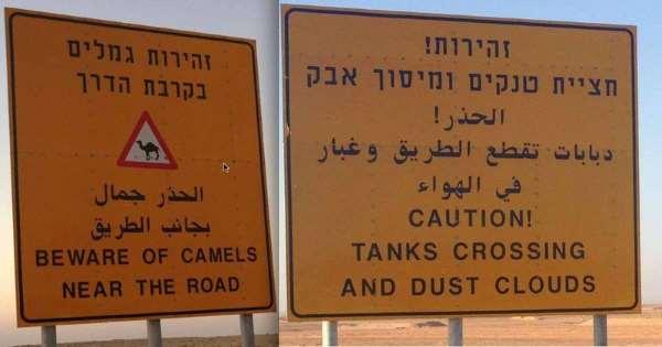 Shangrala's Only In Israel