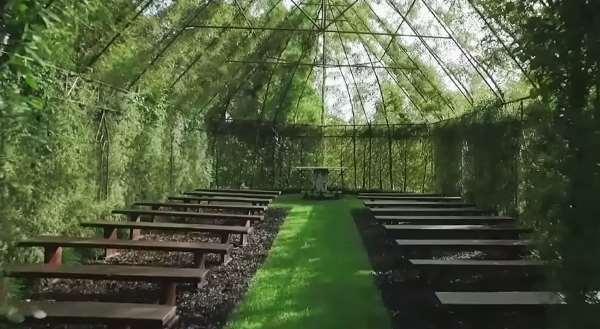 Shangrala's Living Tree Church