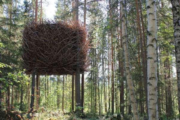 Shangrala's World's Best Treehouses