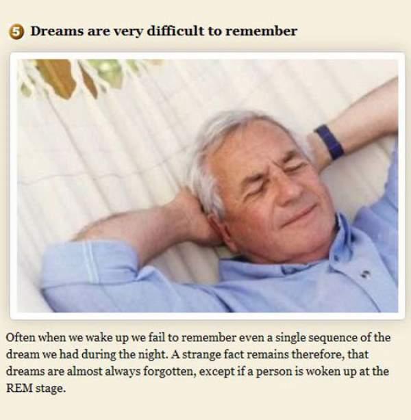 Shangrala's Amazing Dream Facts