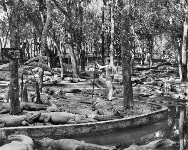Shangrala's Rare Historical Photos 2