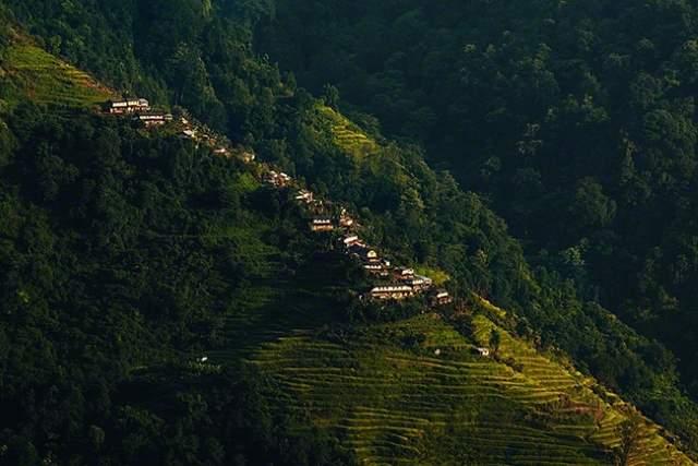 Shangrala's Honey Hunters Of Nepal