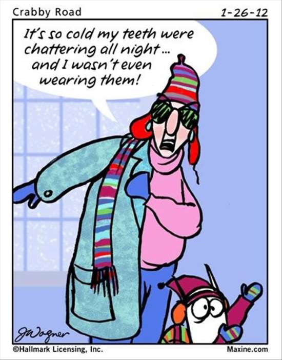 Shangrala's Maxine On Winter