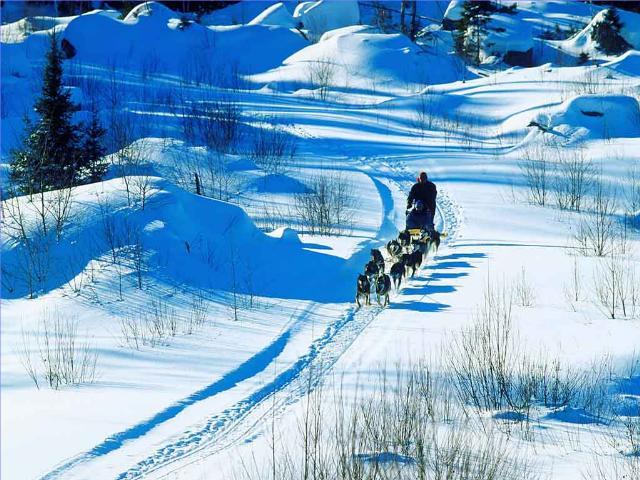 Shangrala's Santa Land Up North