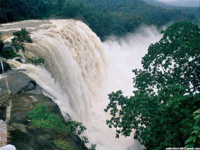 Shangrala's Beautiful Kerala India