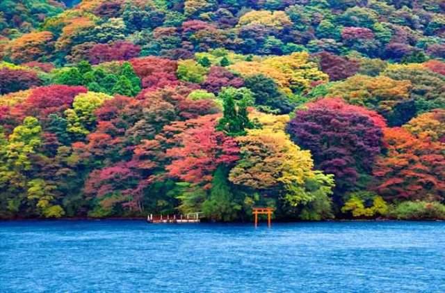 Shangrala's World's Beautiful Lakes