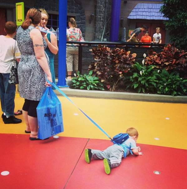 Shangrala's To Leash Or Not To Leash