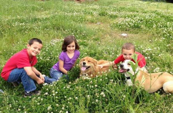 Shangrala's Why Dogs Are Good For Kids