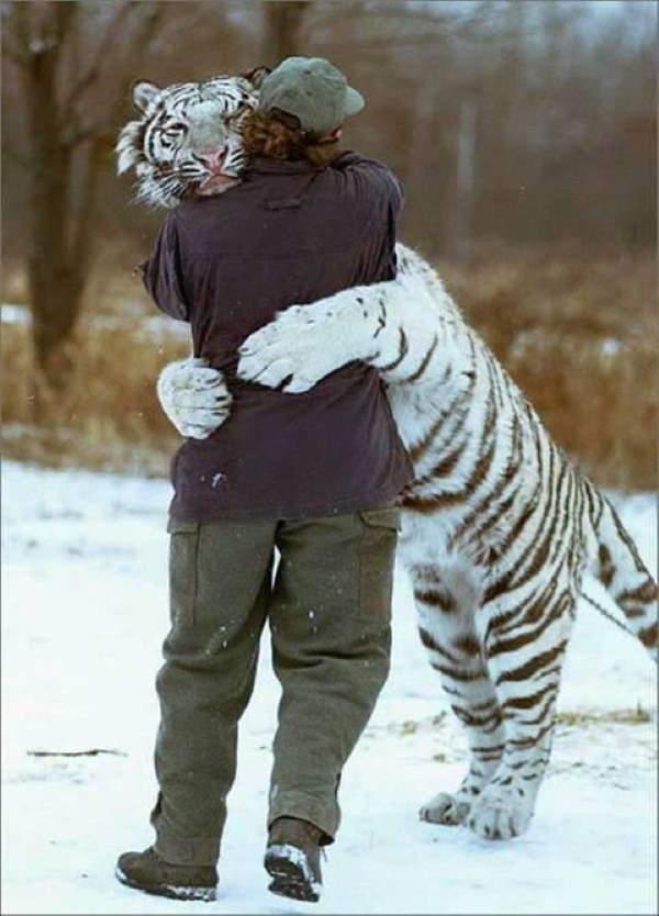 Shangrala's Perfect Hugs