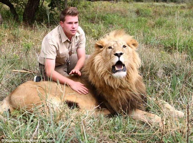 Shangrala's Lion Massages