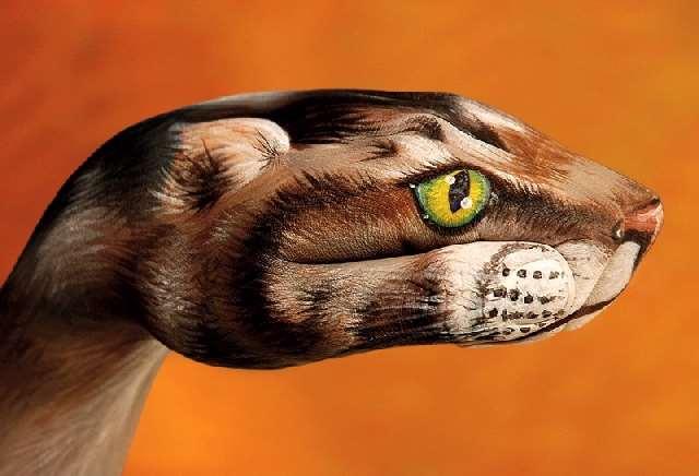 Shangrala's Hand Painting Art