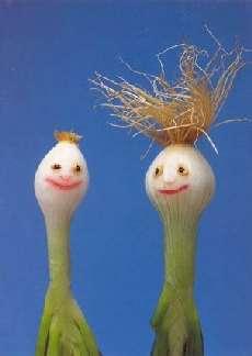 Shangrala's Veggie Art