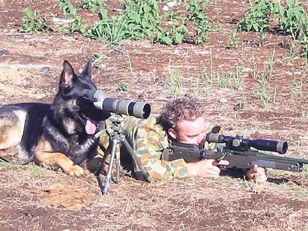 Shangrala's Dog Warriors