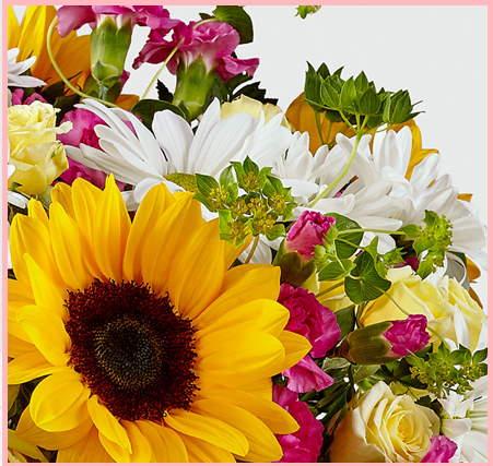 Avas Flowers!
